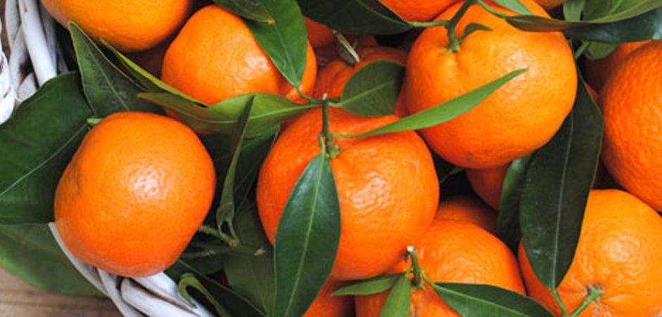 8 frutas de temporada que debes tener en casa