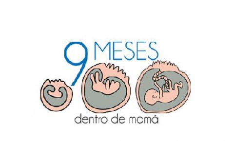 9 meses dentro de mamá