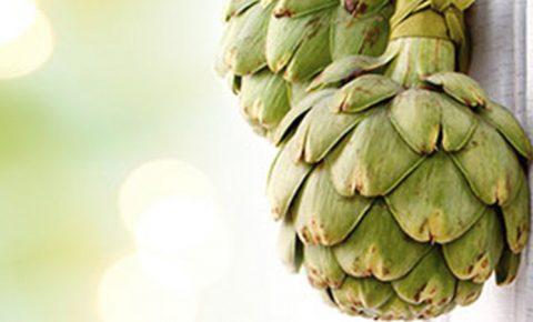 Alcachofa, cero grasa y mucha salud