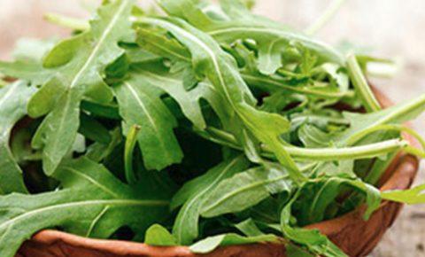 Arúgula, un alimento eficaz y bajo en grasa