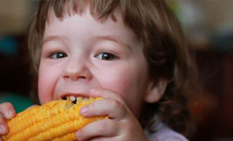 Niños: ¡A comer maíz!