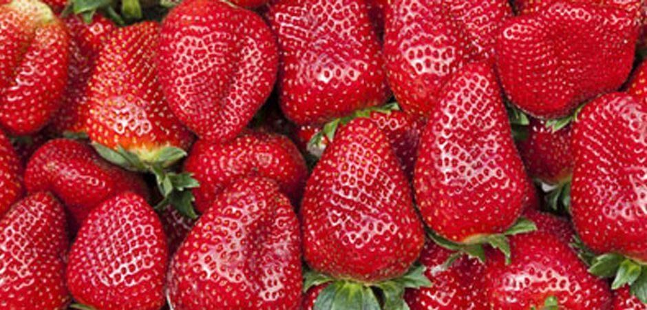 Beneficios que no conocías de las fresas