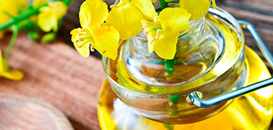 Cocina saludable con aceite de canola