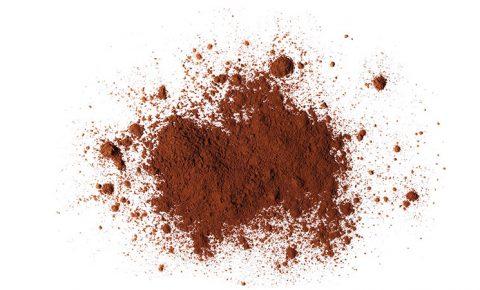 Cocoa, aliada en tu salud, ¡y en tus postres!