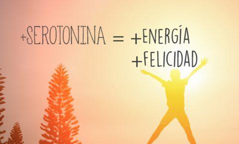 Más energía, más serotonina