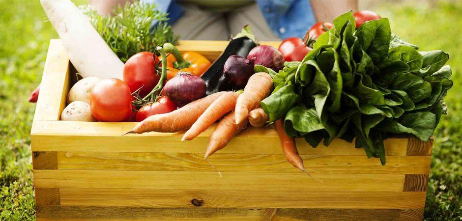 Comida orgánica: Lo que todos debemos saber