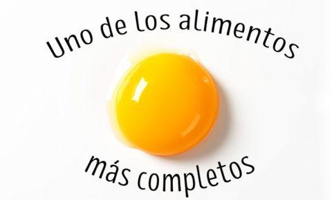 El huevo y el mito del colesterol