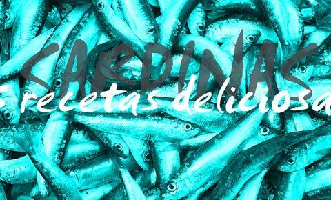 Ideas deliciosas para cocinar sardinas