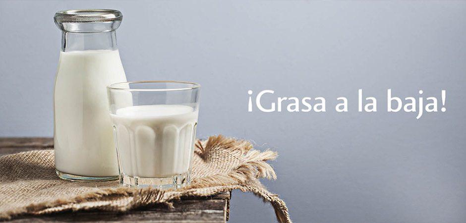 Lo que no sabías de los lácteos bajos en grasa