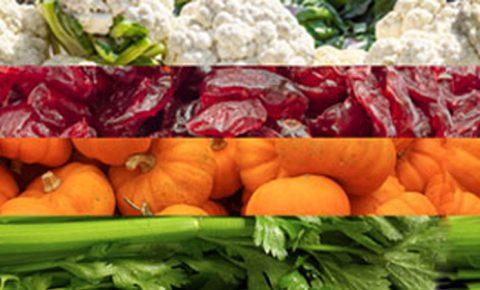 Los súper alimentos del mes