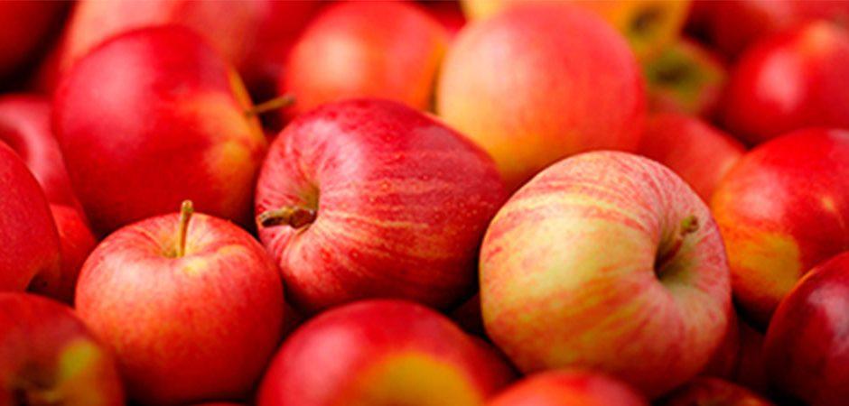 Manzana roja: el fruto ¡cero prohibido!