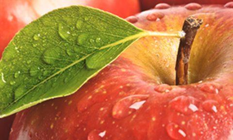 Manzanas, ¿son tan buenas como dicen?