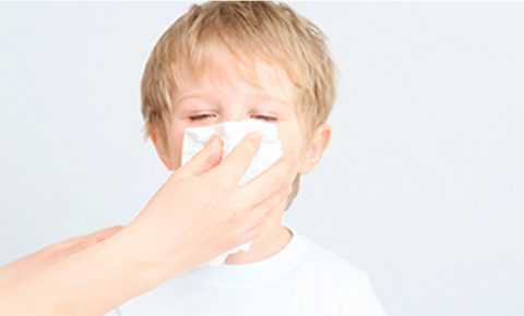 Nueve cosas que debes saber de la nariz y las vías respiratorias