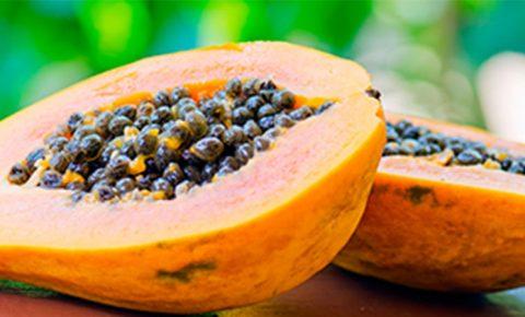 Papaya, la fruta de cabecera