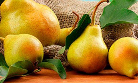 Peras, un fruto dulce y ligero