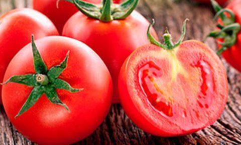 ¿Por qué el tomate es bueno para la salud?
