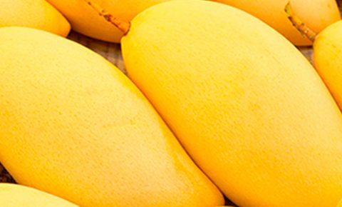 Postres y mango, ¡buena combinación!