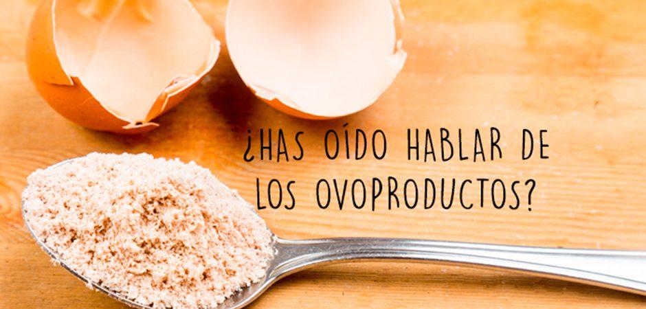 Productos derivados del huevo