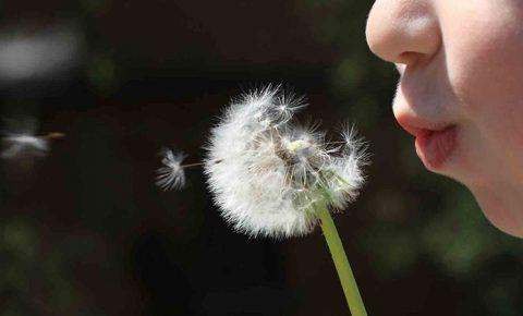 ¿Tienes rinosinusitis alérgica y no lo sabes?