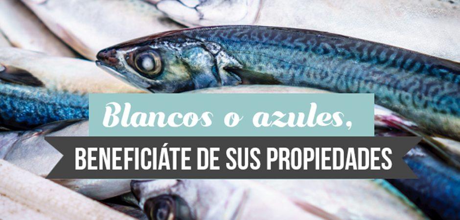 Pescado, nutritivo y saludable