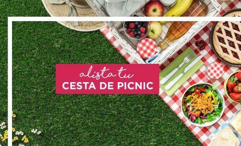 Alista tu cesta de picnic