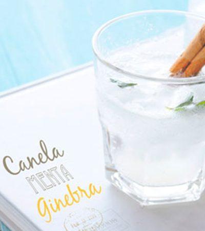 Bebida de canela, limón y menta