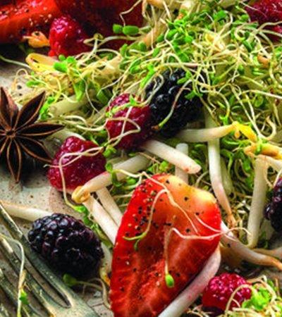 Ensalada de germinado y frutos rojos