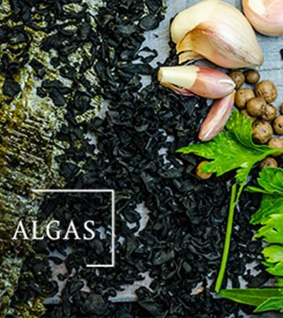 Fondo de algas
