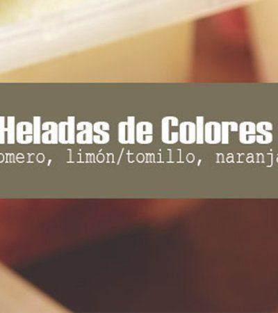 Paletas heladas de colores y frutas